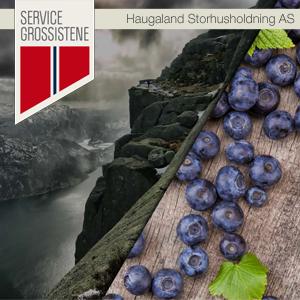 Haugaland Storhusholdning